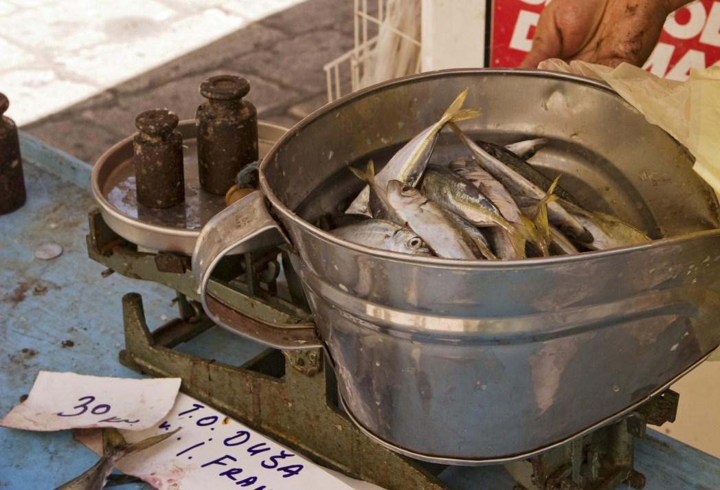 marisco en Valencia