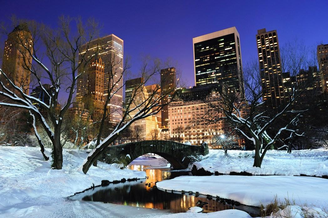 central park de nueva york en invierno