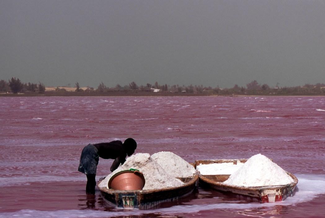 Lake retba senegal pink lake