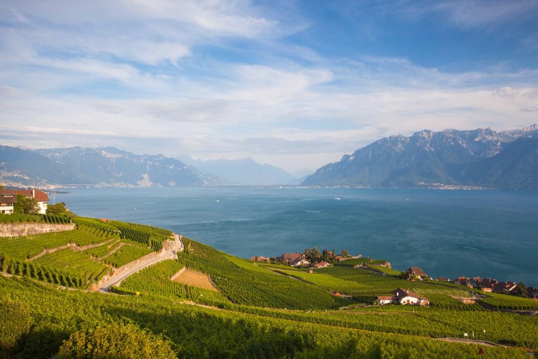 el lago leman visto desde los viñedos de lavaux