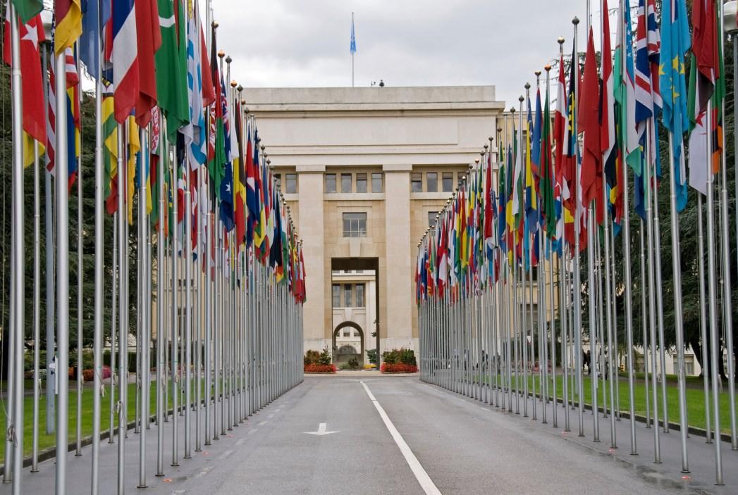 avenida llena de banderas a la entrada de la sede de la ONU en Ginebra