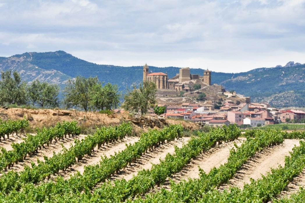 viñedos y castillo