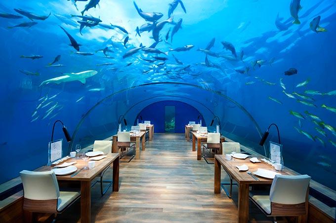Los Mejores Hoteles Bajo El Agua De Dubái A Las Maldivas