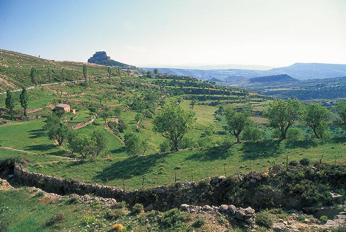 Morella Valencia