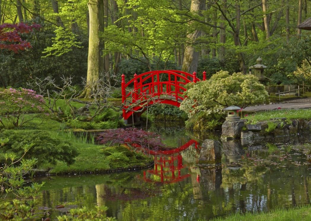 jardín japonés en holanda