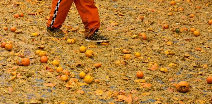 Batalla de las Naranjas en Ivrea, Italia