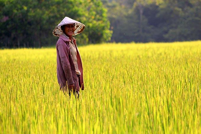 ciudadano de laos