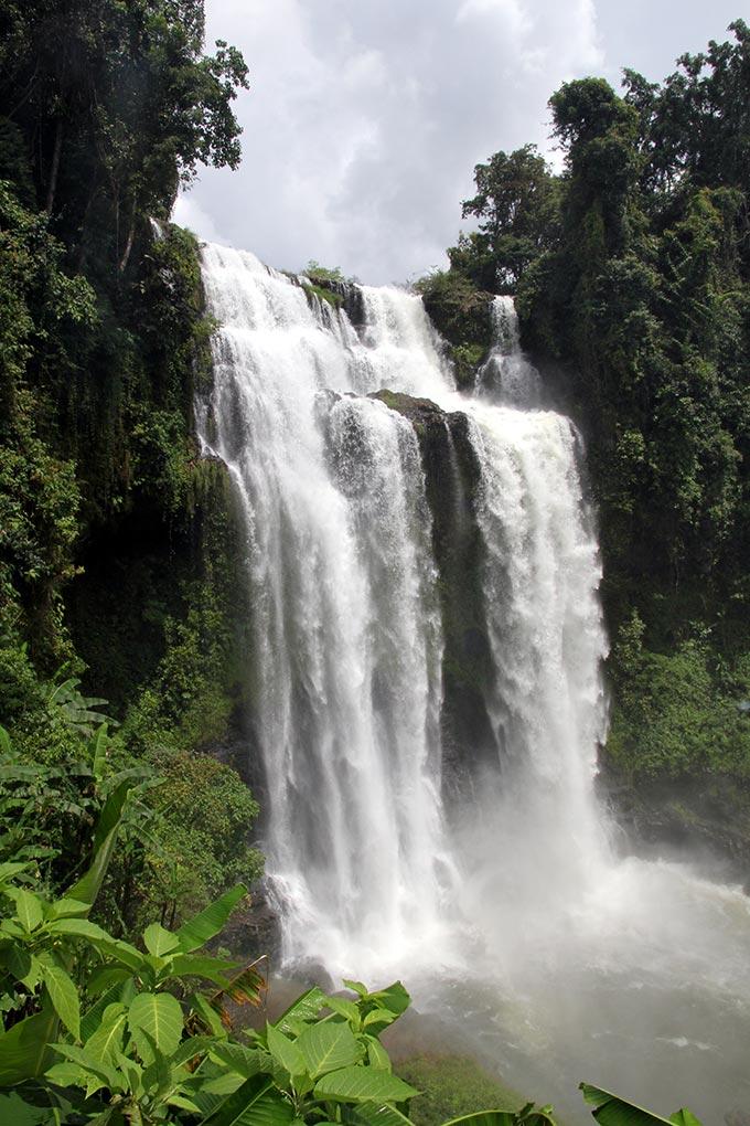 meseta de bolaven en laos