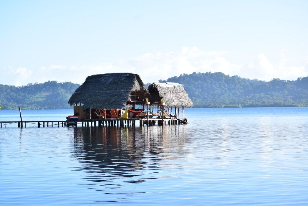 coworking coco vivo en panamá