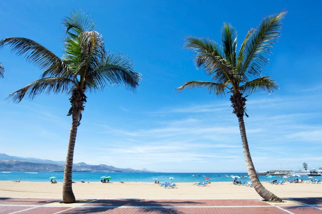 playa las Canteras Gran Canaria