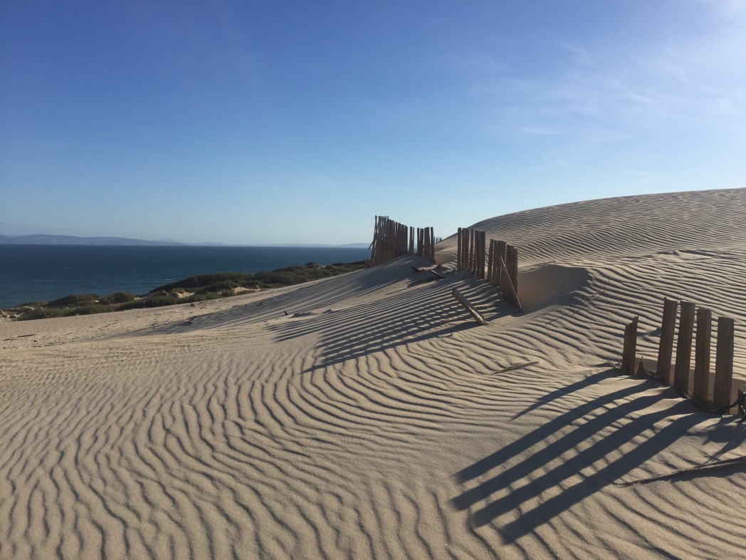 playa de Punta Paloma en Tarifa, Cádiz, Andalucía